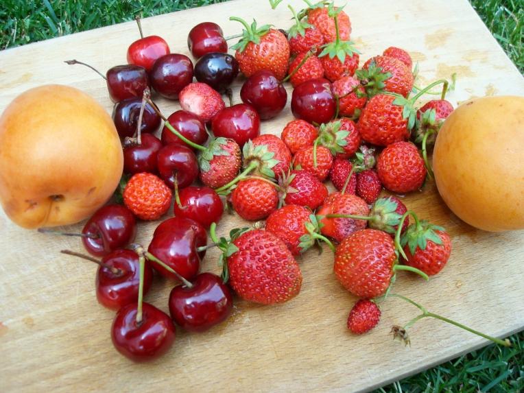 tuttifrutti3
